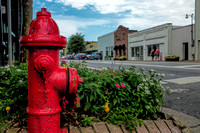 Fairhope Photographer