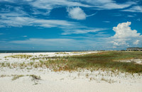 Dauphin Island Photographer