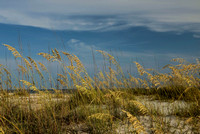 Orange Beach Photography