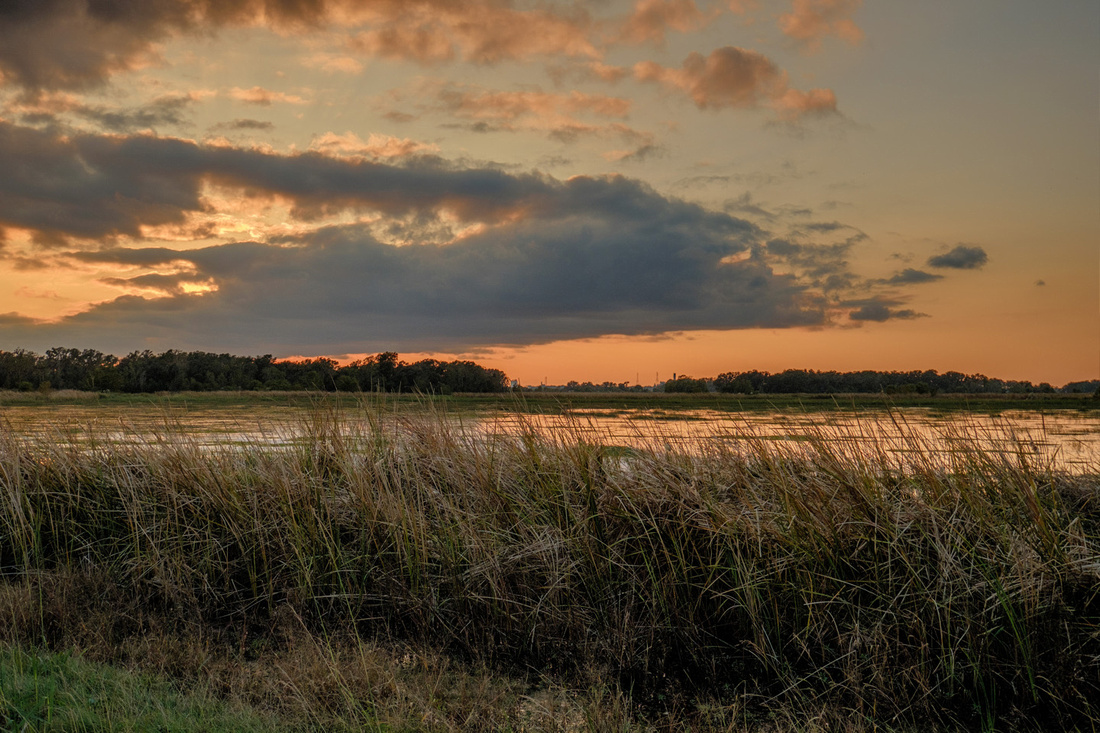 Sunset at the Savannah National Wildlife Refuge