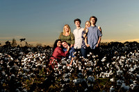 Cotton Field Family Portrait Loxley Alabama