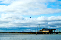 Fairhope Photography