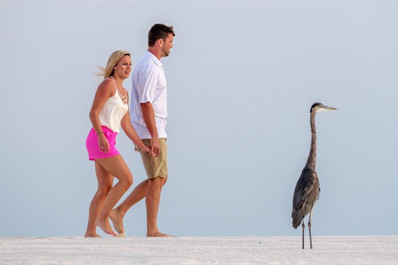 Beach Propsoal Photographer in Orange Beach Alabama